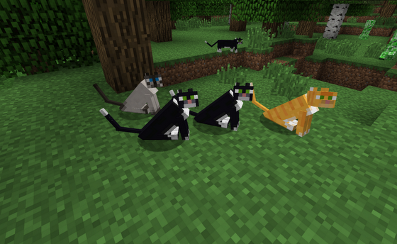 gatto-minecraft