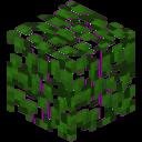 128px-Block_Rainbow_Oak_Leaves