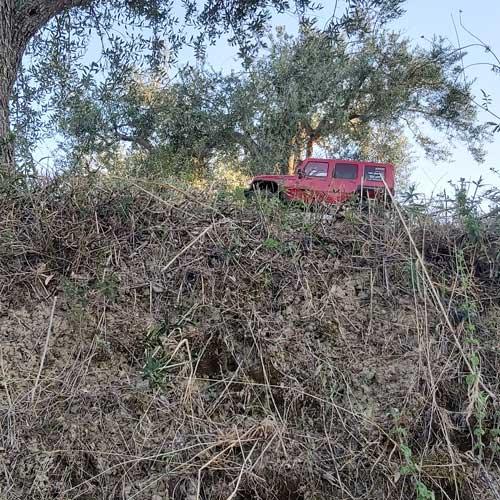 Altopiano degli uliv